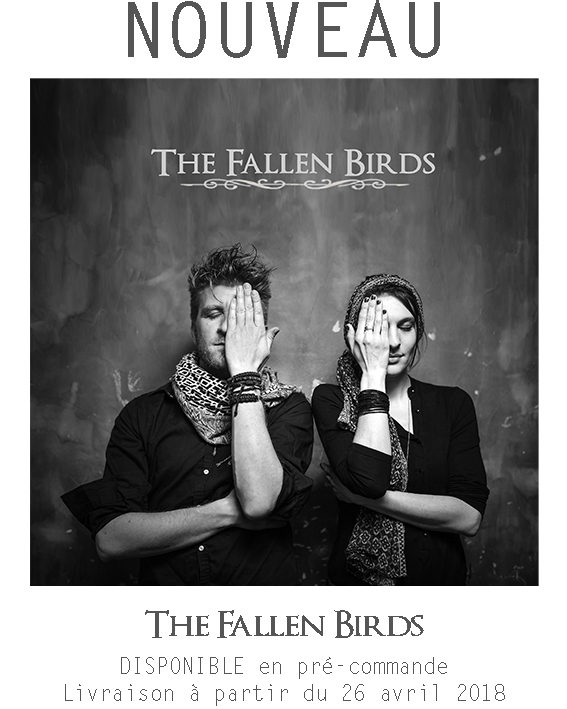 BANDEAU_THE_FALLEN_BIRDS