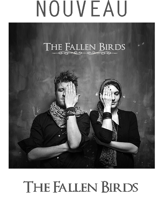 BANDEAU_THE_FALLEN_BIRDS_2020